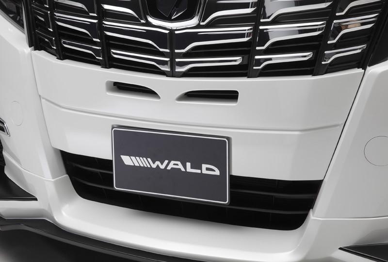 wald-earo-30alphard-s-half